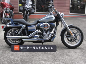 '13 FXDL_1